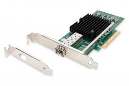 Network Cards & Adapter