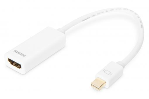 DisplayPort Adapter / Konverter